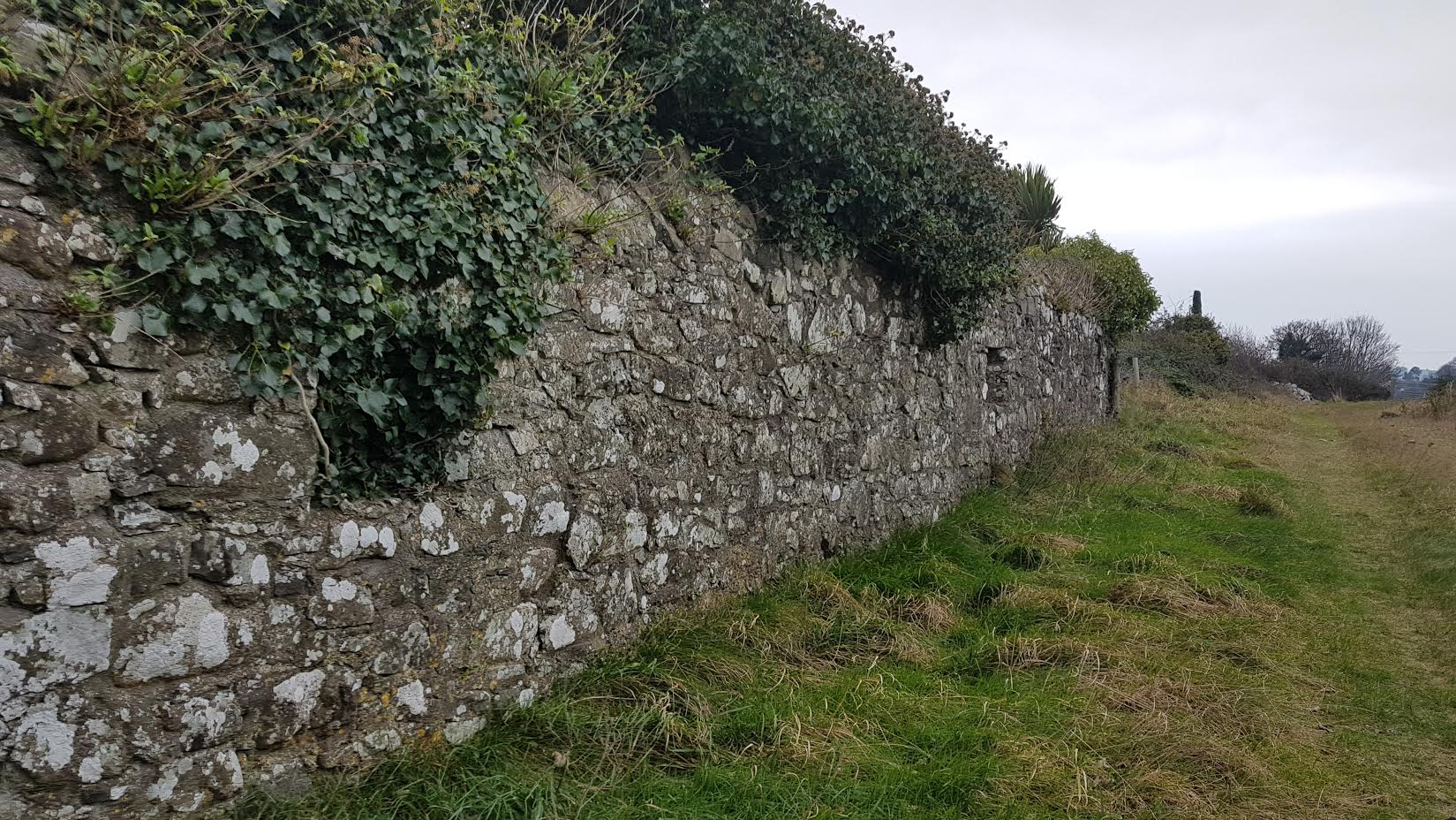 Town Wall